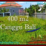 Magnificent PROPERTY LAND SALE IN Canggu Pererenan BALI TJCG189