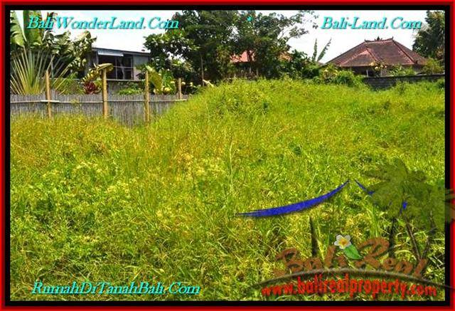 Affordable 400 m2 LAND FOR SALE IN CANGGU TJCG189