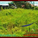 Magnificent CANGGU 400 m2 LAND FOR SALE TJCG189