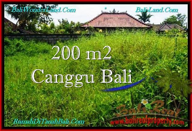 Affordable 200 m2 LAND FOR SALE IN CANGGU TJCG190