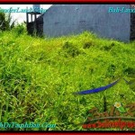 Exotic 200 m2 LAND IN CANGGU FOR SALE TJCG190