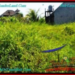 Magnificent CANGGU 200 m2 LAND FOR SALE TJCG190