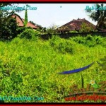 Beautiful 200 m2 LAND SALE IN CANGGU TJCG190
