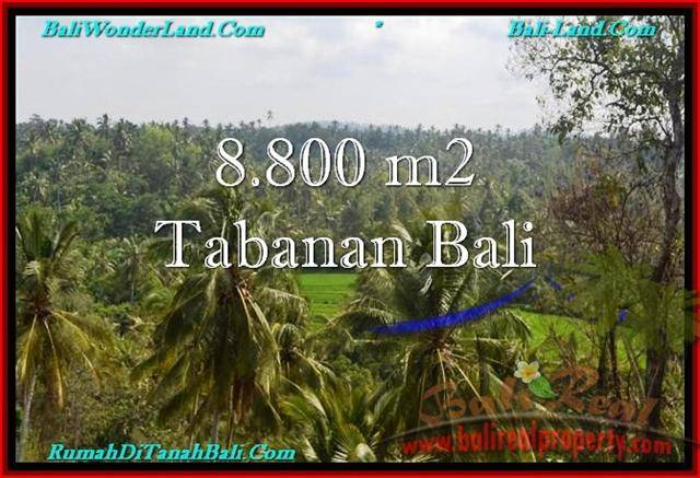 Affordable LAND IN Tabanan Selemadeg BALI FOR SALE TJTB238