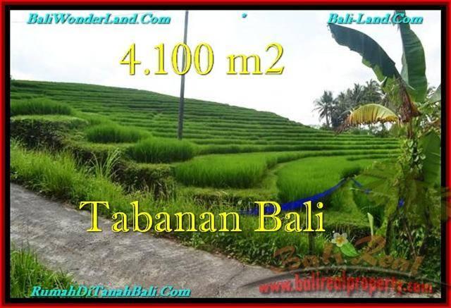 Exotic Tabanan Selemadeg BALI LAND FOR SALE TJTB239