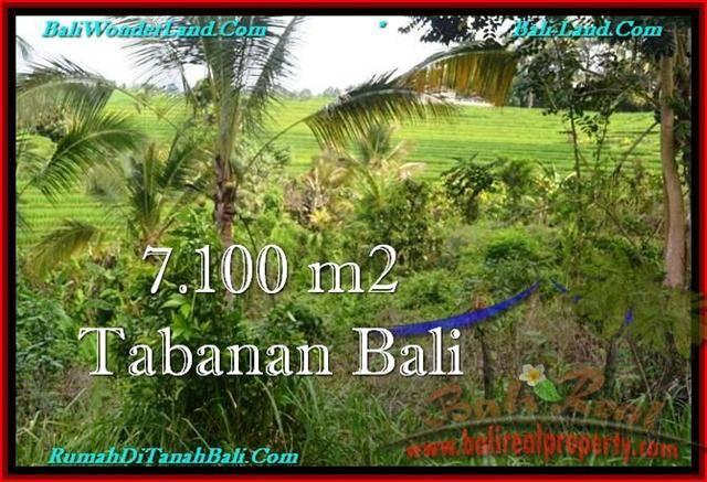 Exotic Tabanan Selemadeg BALI LAND FOR SALE TJTB240