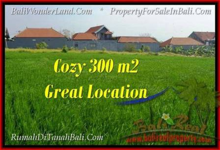 Beautiful PROPERTY 300 m2 LAND SALE IN CANGGU BALI TJCG186
