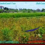 Magnificent CANGGU 200 m2 LAND FOR SALE TJCG191