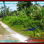 Beautiful 200 m2 LAND SALE IN CANGGU TJCG191
