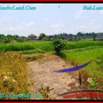 FOR SALE Affordable PROPERTY 200 m2 LAND IN CANGGU TJCG191