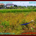 Exotic PROPERTY 200 m2 LAND FOR SALE IN CANGGU BALI TJCG191
