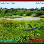 Beautiful 500 m2 LAND SALE IN CANGGU TJCG192