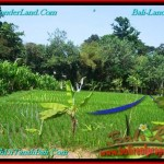 Affordable LAND SALE IN Canggu Brawa TJCG193