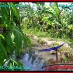 FOR SALE Exotic LAND IN Canggu Brawa TJCG193