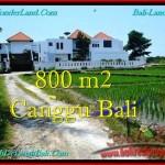 Beautiful LAND IN Canggu Brawa BALI FOR SALE TJCG194