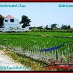 Beautiful LAND IN Canggu Brawa BALI FOR SALE TJCG194