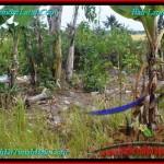Exotic PROPERTY LAND SALE IN Canggu Pererenan BALI TJCG196