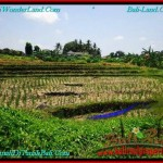 FOR SALE Magnificent PROPERTY LAND IN Canggu Pererenan BALI TJCG197