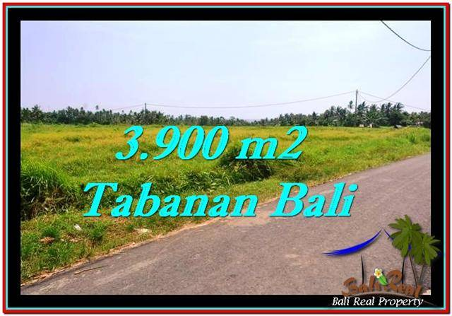 Affordable LAND IN Tabanan Selemadeg BALI FOR SALE TJTB258
