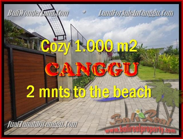 Beautiful LAND IN Canggu Pererenan BALI FOR SALE TJCG161