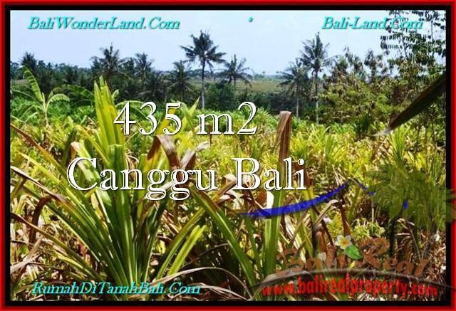 Beautiful PROPERTY 435 m2 LAND IN Canggu Pererenan BALI FOR SALE TJCG196
