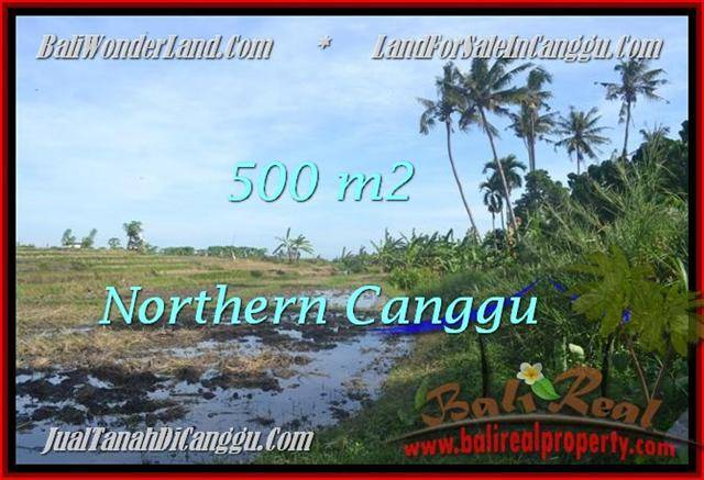 Beautiful Canggu Pererenan BALI LAND FOR SALE TJCG181