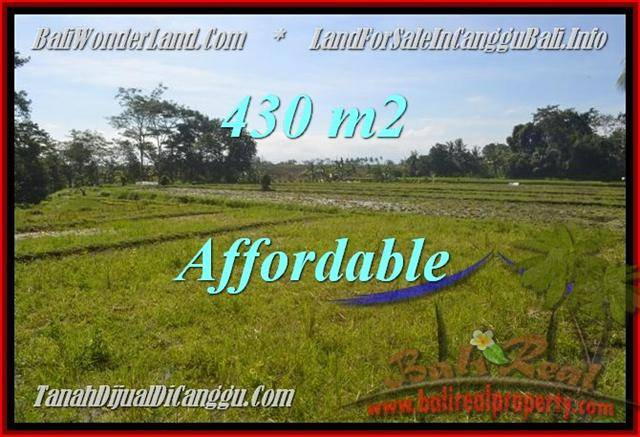 FOR SALE Exotic PROPERTY LAND IN Canggu Pererenan BALI TJCG183