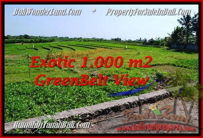 1,000 m2 LAND IN CANGGU FOR SALE TJCG184