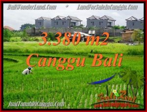 Exotic 3,380 m2 LAND IN CANGGU BALI FOR SALE TJCG199