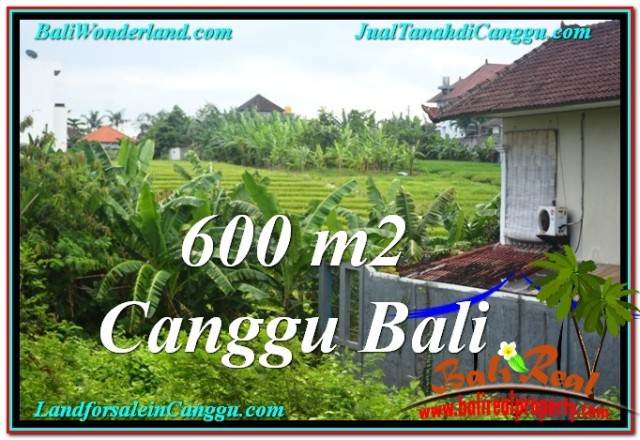 Exotic 600 m2 LAND IN CANGGU FOR SALE TJCG206