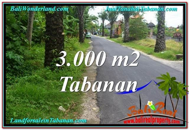 Exotic PROPERTY LAND FOR SALE IN TABANAN TJTB297