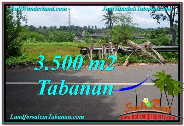 Affordable PROPERTY TABANAN BALI 3,500 m2 LAND FOR SALE TJTB298