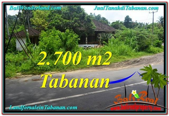 Exotic PROPERTY 2,700 m2 LAND SALE IN TABANAN BALI TJTB299