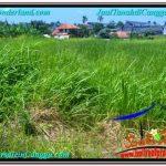 Affordable PROPERTY LAND SALE IN Canggu Brawa BALI TJCG201