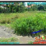 Beautiful 300 m2 LAND FOR SALE IN CANGGU BALI TJCG203