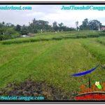 Exotic 300 m2 LAND SALE IN CANGGU TJCG205