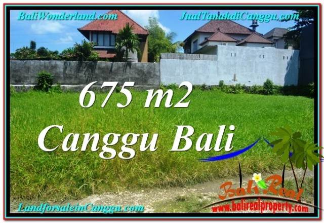 FOR SALE Affordable PROPERTY LAND IN Canggu Brawa BALI TJCG200