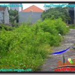 600 m2 LAND IN CANGGU FOR SALE TJCG206