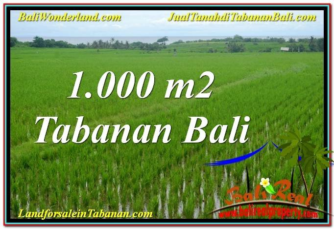 Affordable LAND SALE IN TABANAN BALI TJTB307