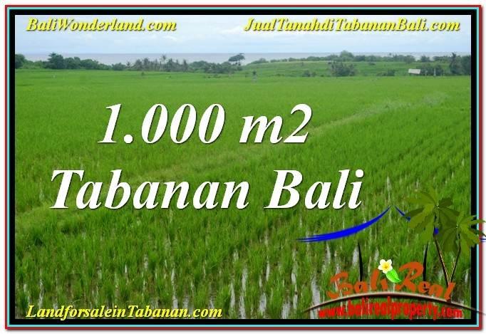 Affordable LAND SALE IN TABANAN BALI TJTB307