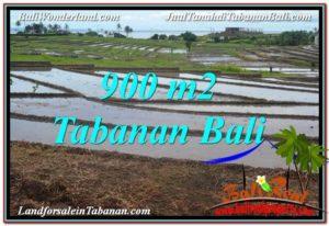 Beautiful PROPERTY LAND IN TABANAN BALI FOR SALE TJTB308