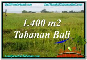 Affordable PROPERTY 1,400 m2 LAND SALE IN TABANAN TJTB309