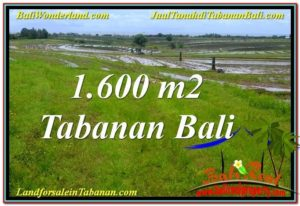 Exotic PROPERTY LAND IN TABANAN BALI FOR SALE TJTB310