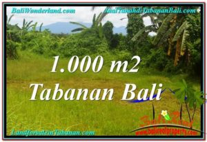 LAND IN Tabanan Selemadeg BALI FOR SALE TJTB311