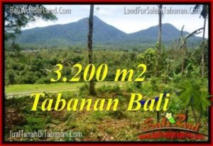Exotic PROPERTY Tabanan Penebel BALI LAND FOR SALE TJTB319
