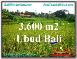 Exotic PROPERTY 3,600 m2 LAND SALE IN UBUD BALI TJUB566
