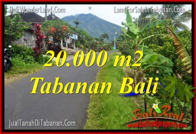 Beautiful PROPERTY 20,000 m2 LAND IN Tabanan Penebel BALI FOR SALE TJTB315