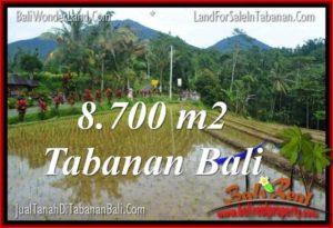 Affordable PROPERTY LAND FOR SALE IN TABANAN TJTB316