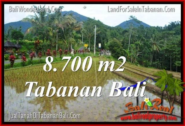 Affordable PROPERTY LAND FOR SALE IN TABANAN TJTB316