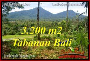 Beautiful 3,200 m2 LAND SALE IN TABANAN TJTB319